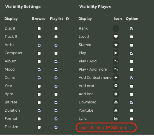 settings-for-tags-shown-in-the-playqueue.png